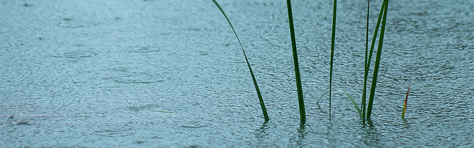 En SMS når cykelstien er oversvømmet